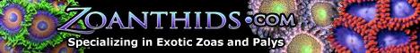 http://www.fragniappe.com/images_fragniappe/exhibitors/zoanthids.png