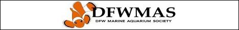 Dallas Fort Worth Marine Aquarium Society